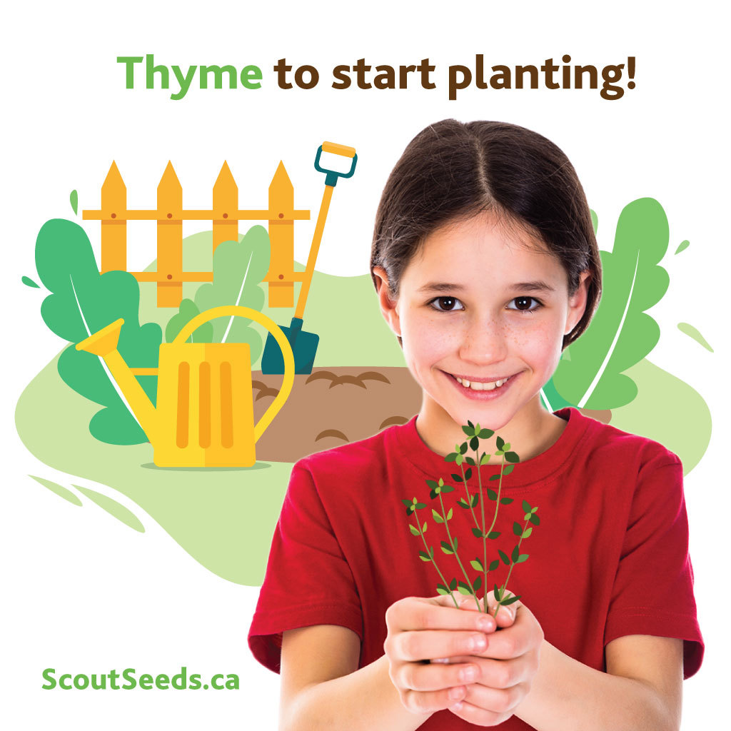 Scout Seeds Fundraiser