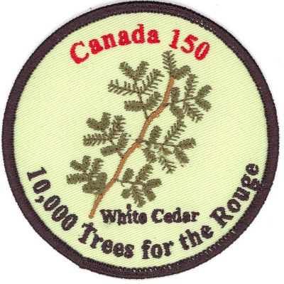 10K Trees for the Rouge