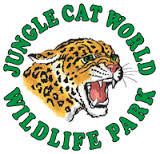 Jungle Cat World